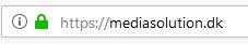 SSL https grøn hængelås